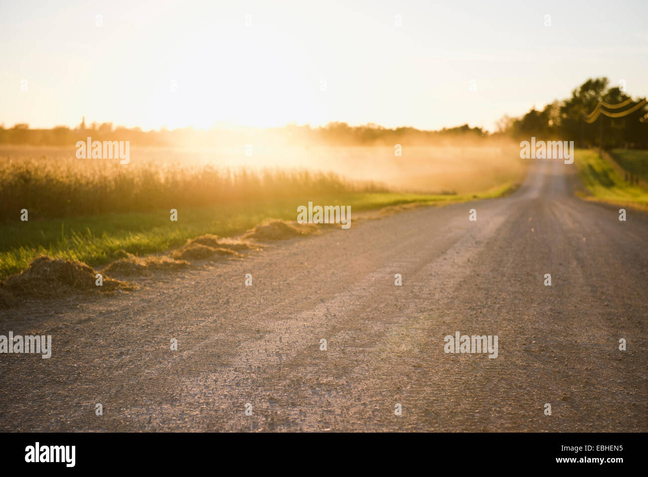 Rural road and mists over fields at sunrise, Missouri, USA - Stock Image