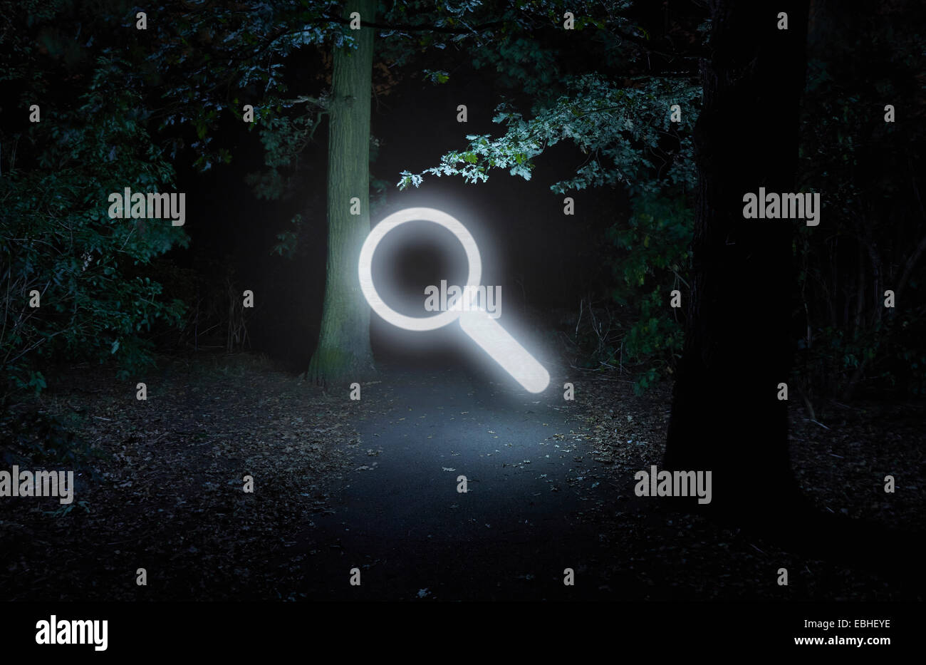 Forest at night, with illuminated search symbol - Stock Image