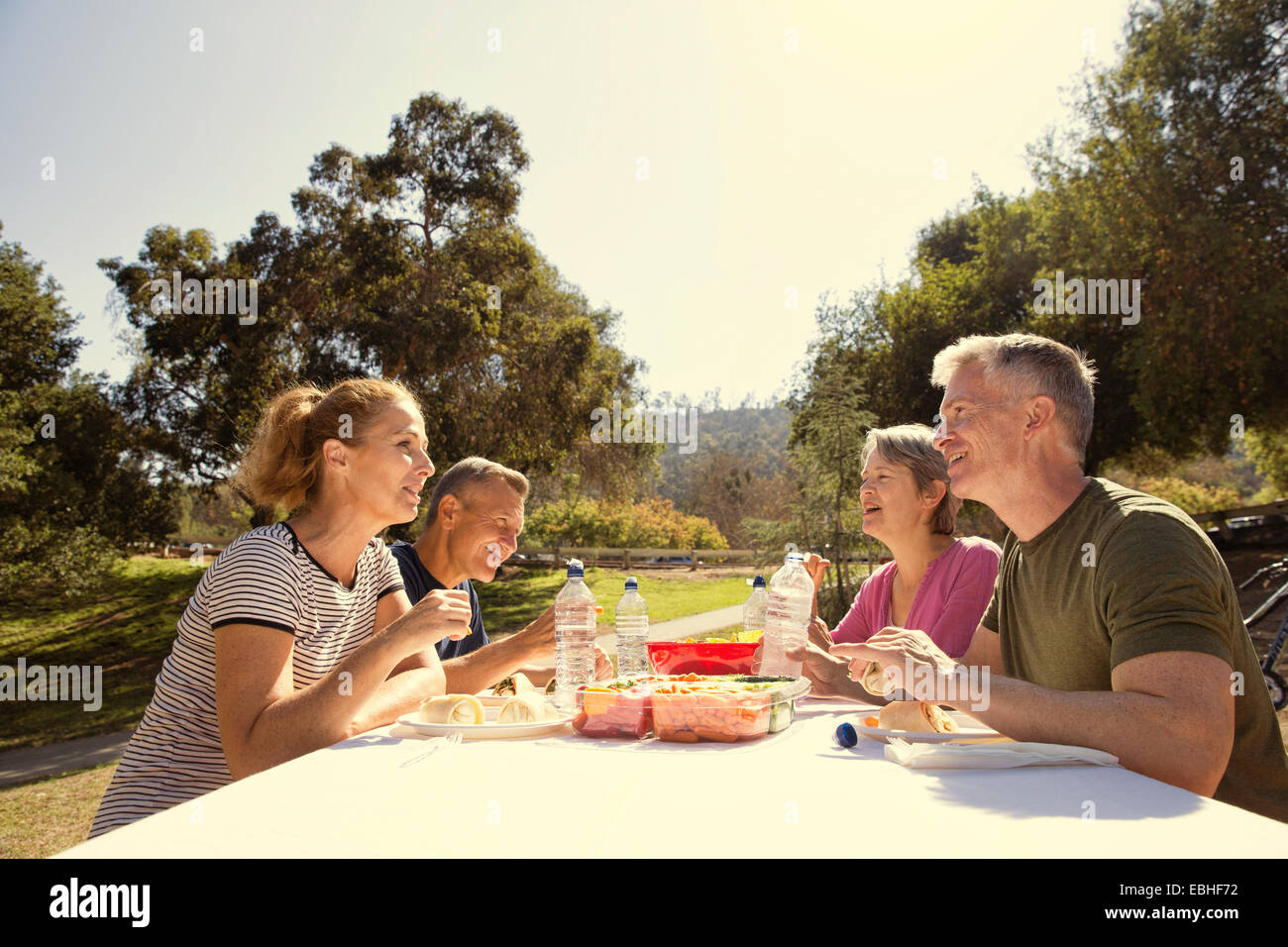 Four mature adult friends having a picnic lunch in park - Stock Image