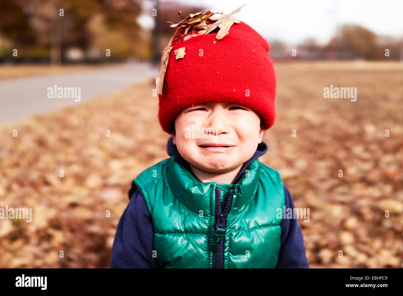 Portrait of male toddler with autumn leaves on red knitted hat - Stock Image