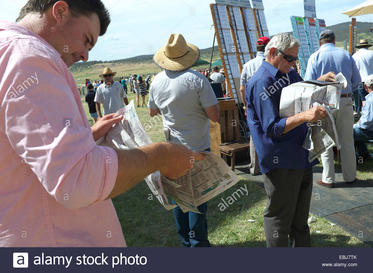 Punters reading the racing papers at the Adaminaby Races (horse racing), in the Snowy Mountains, NSW, Australia. - Stock Image