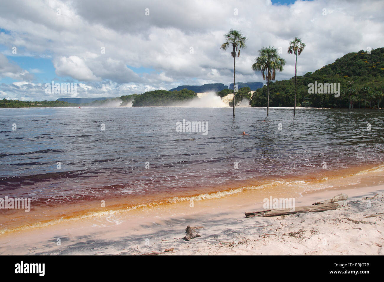 lagoon and waterfall of Canaima, Venezuela, Canaima National Park - Stock Image