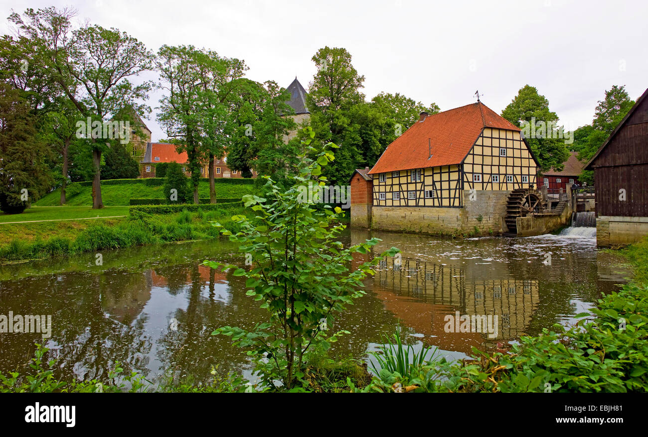 palace garden of water castle Rheda with watermill at river Ems, Germany, North Rhine-Westphalia, Rheda-Wiedenbrueck - Stock Image
