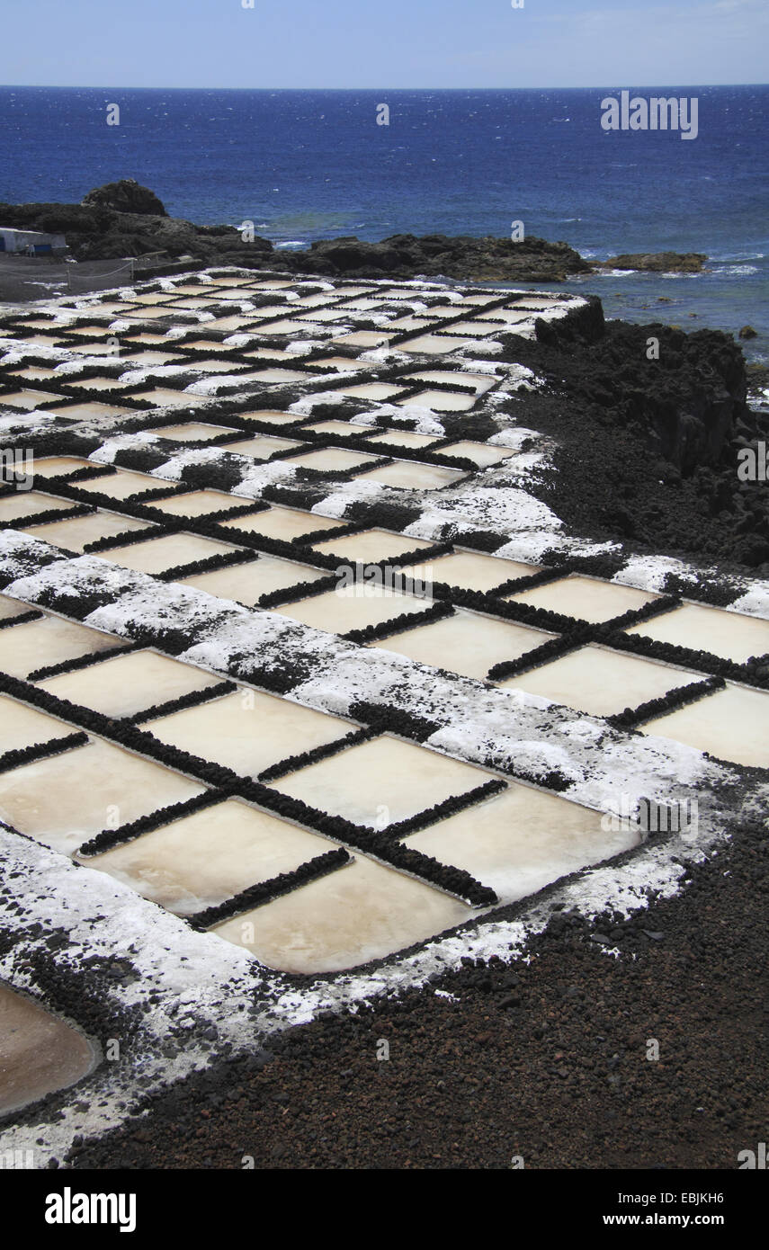 saline at the coast, Canary Islands, La Palma, Punta de Fuencaliente - Stock Image