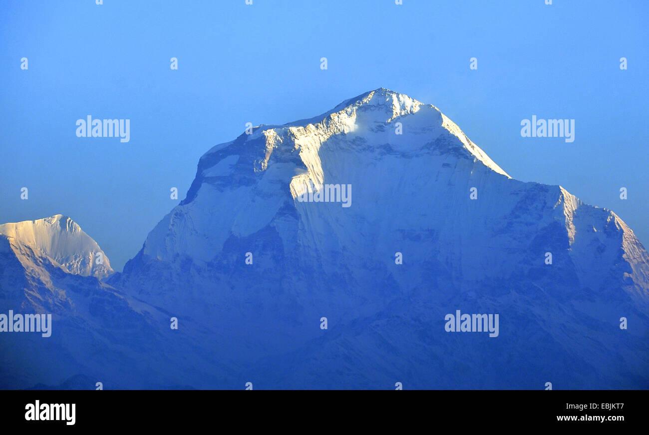 the Dhaulagiri (8167 m) in the Annapurna massif, Nepal - Stock Image