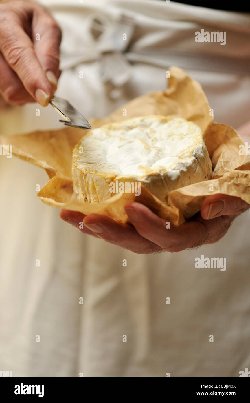 Man holding goats cheese and cheese knife, focus on hands - Stock Image