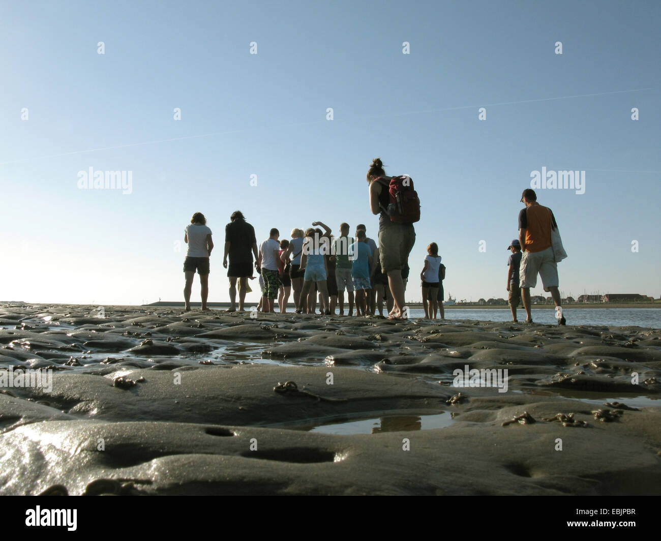 tidal flat hiker during a biological excursion, Germany, Baltrum, Lower Saxony Wadden Sea National Park - Stock Image