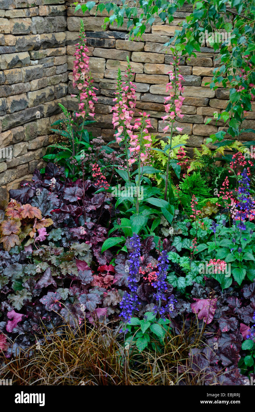 The Planted Border With Mixed Planting Including Foxgloves