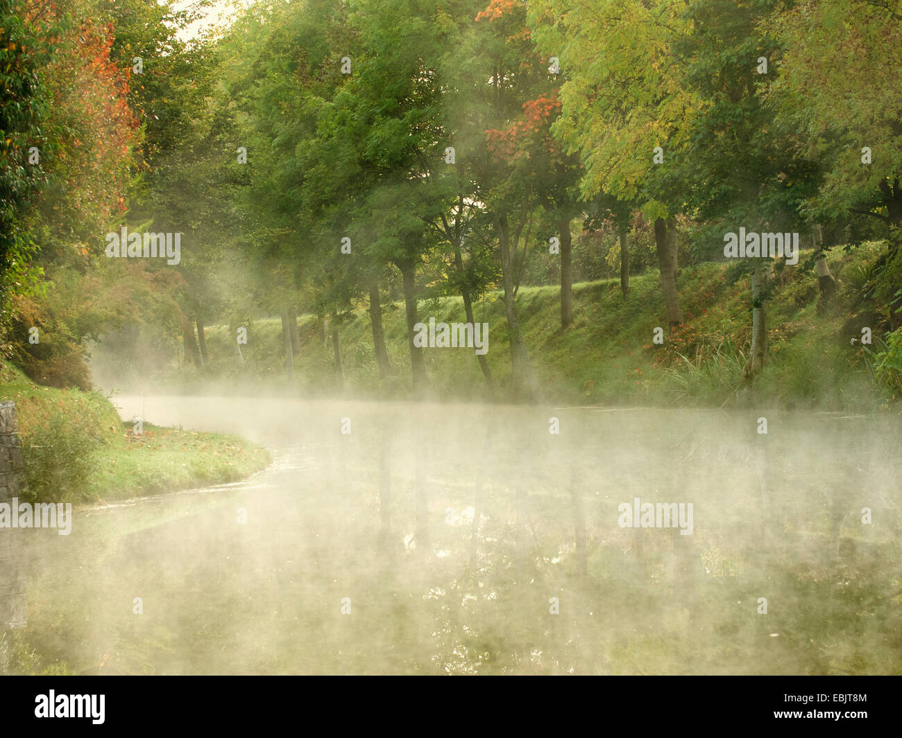 Morning mists on Royal Canal, Ireland - Stock Image