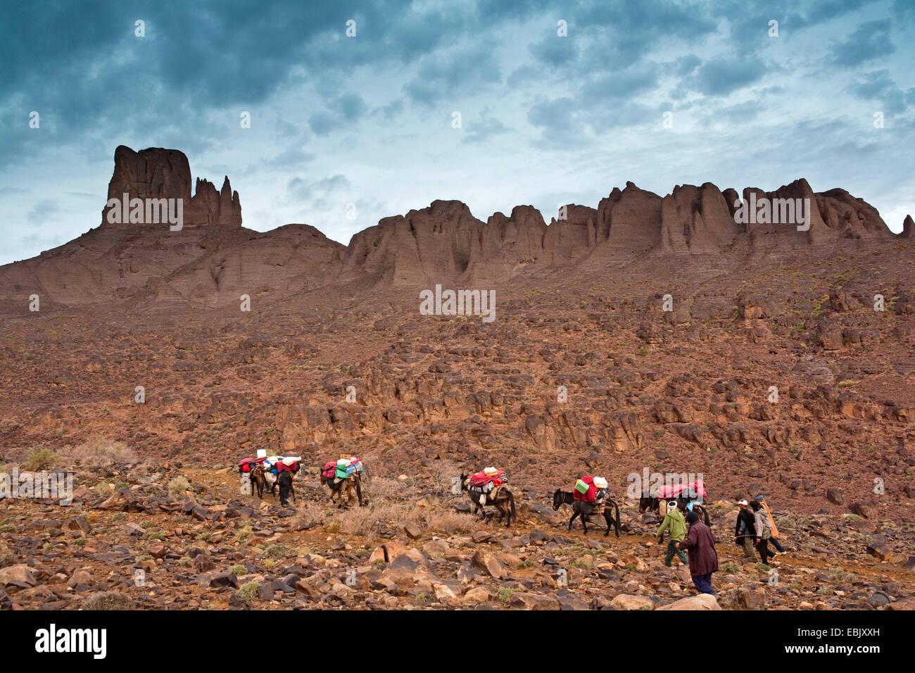 beasts of burden before the Rock, Morocco, Souss-Massa-Dara�, Djebel Sarhro - Stock Image