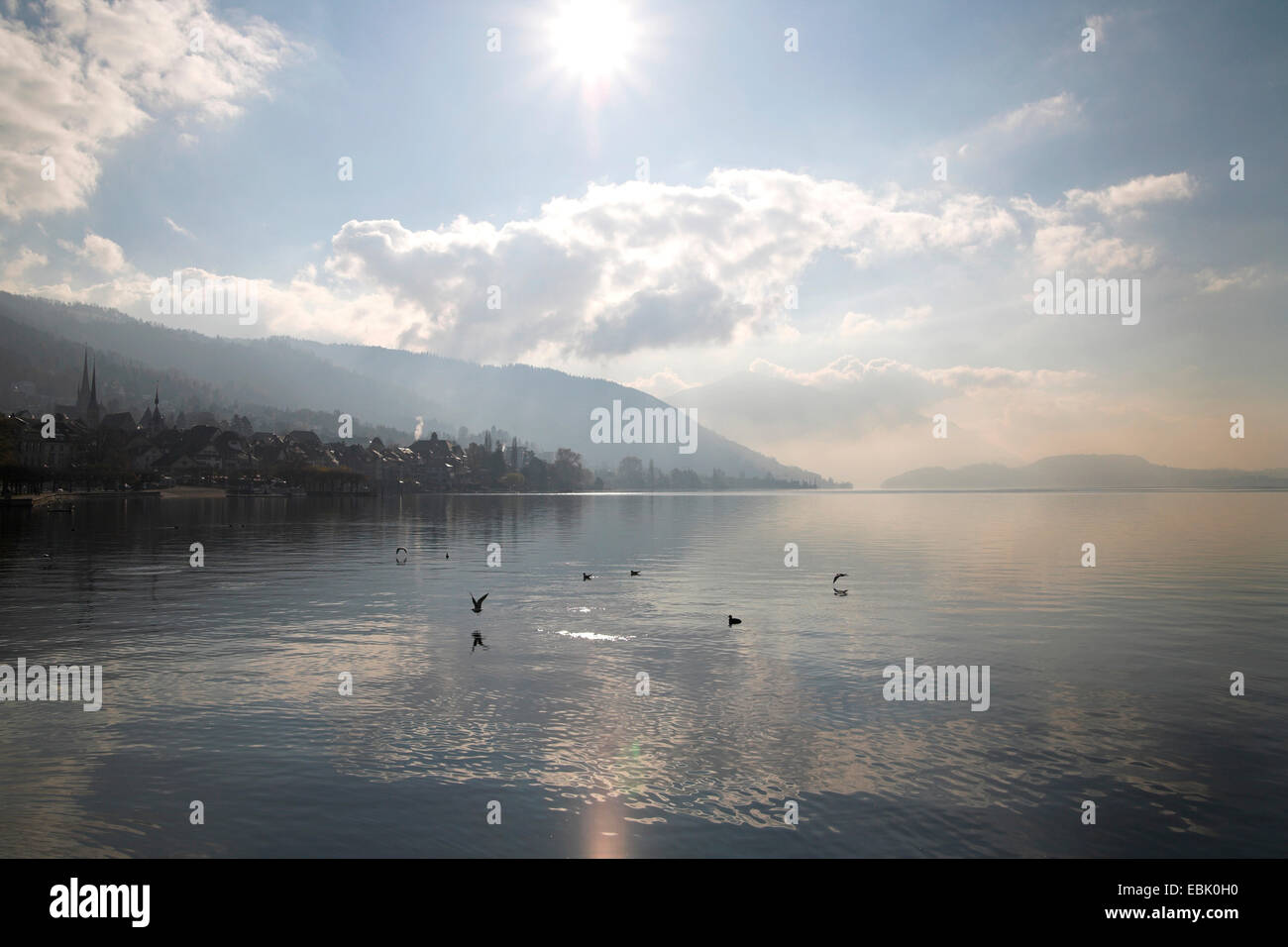 Lake Zug, city and mountains in midday sun, Switzerland, Kanton Zug, Zug - Stock Image