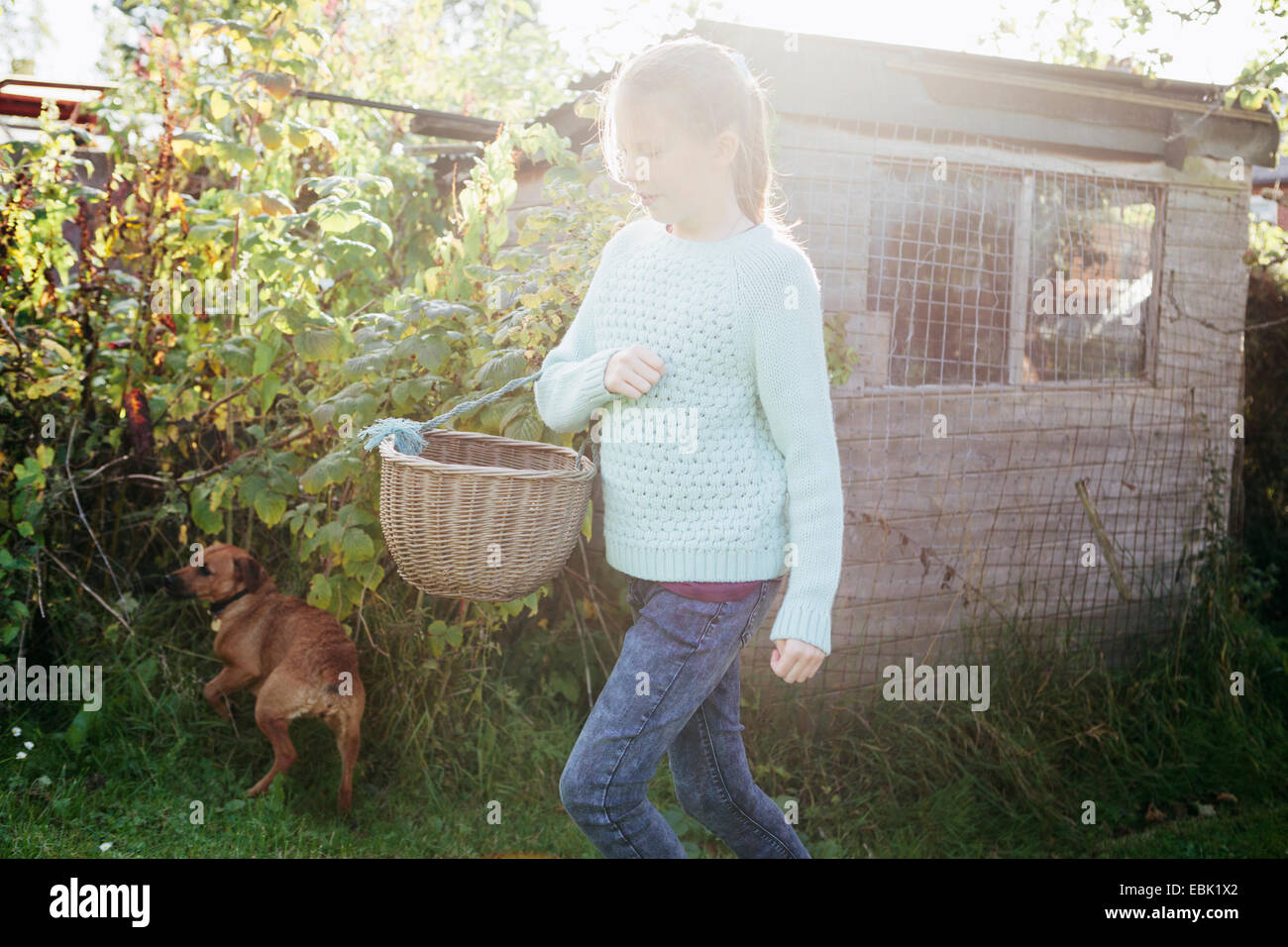 Girl holding basket in garden - Stock Image