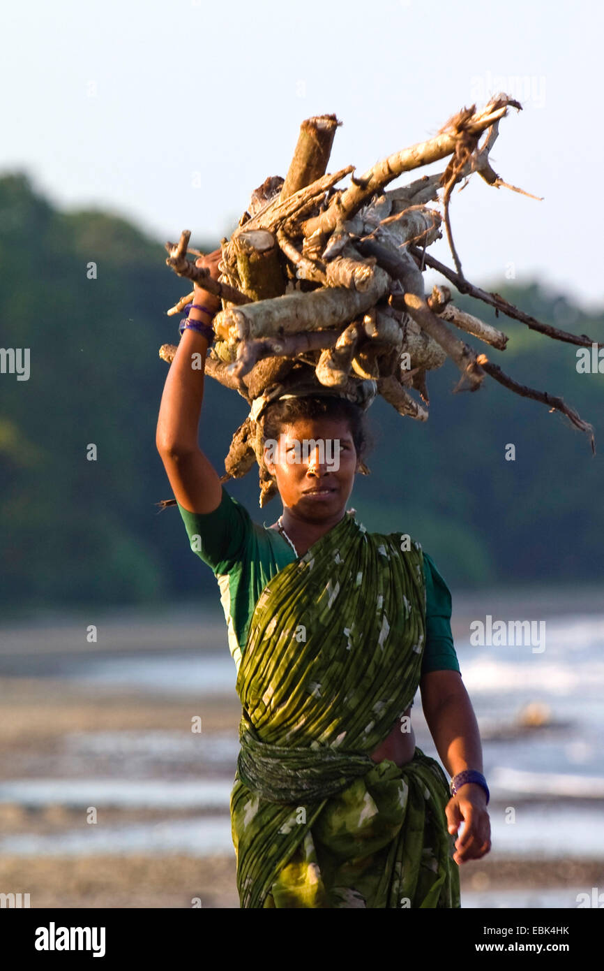 Indian woman with firewood on her head, India, Andaman Islands - Stock Image