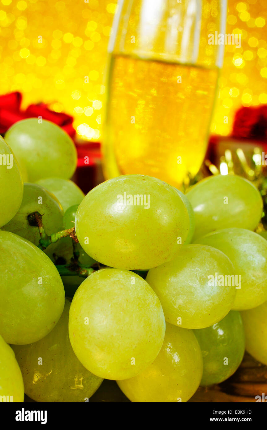 closeup of a bunch of grapes and glasses with champagne in the background for the traditional celebration of the - Stock Image
