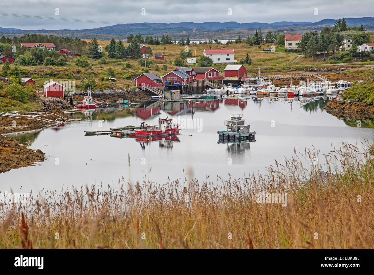 little harbour in the fiord with fishing boats , Norway, Hitra, Fillan - Stock Image