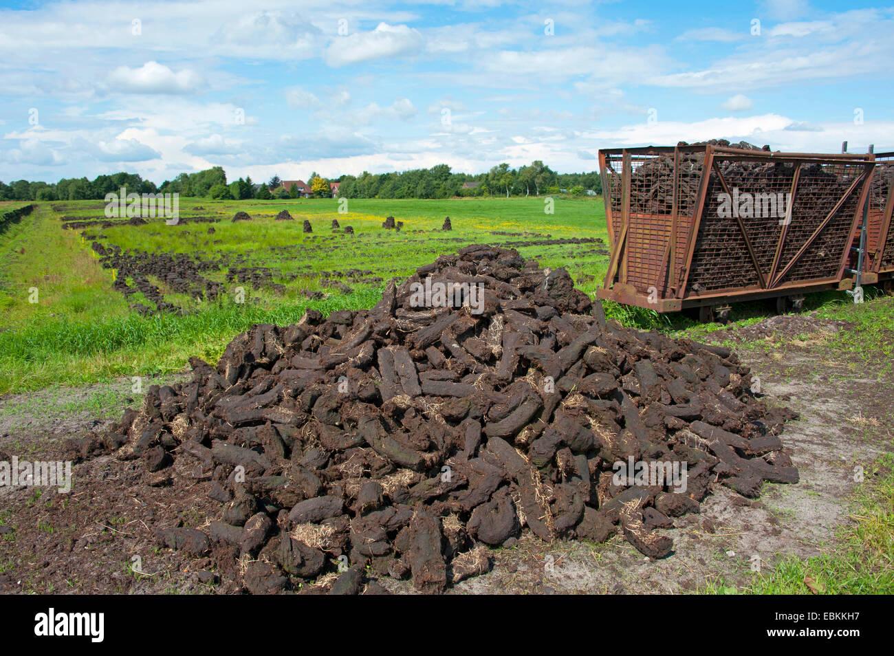 peat cutting, sods of peat, Germany, Lower Saxony, Wilhelmsfehn - Stock Image