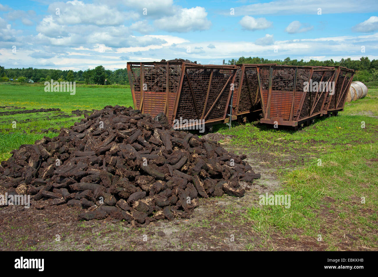 peat cutting, sods of peat and wagons, Germany, Lower Saxony, Wilhelmsfehn - Stock Image