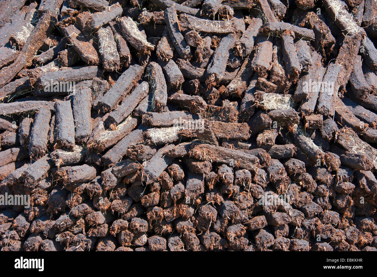 peat cutting, heap with sods of peat, Germany, Lower Saxony, Wilhelmsfehn Stock Photo