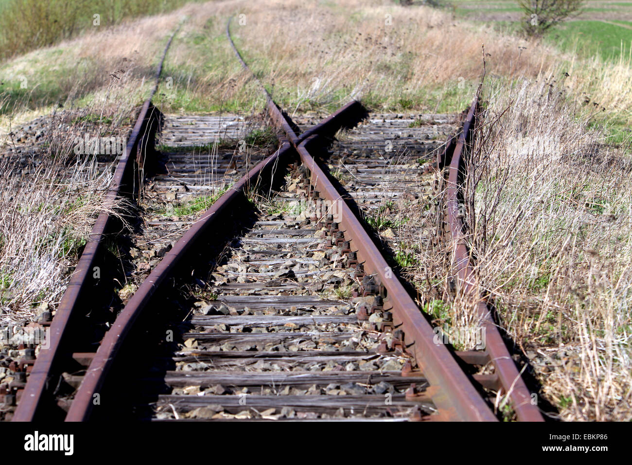 turnout on a disused railroad track, Germany, Mecklenburg-Western Pomerania, Pruchten - Stock Image