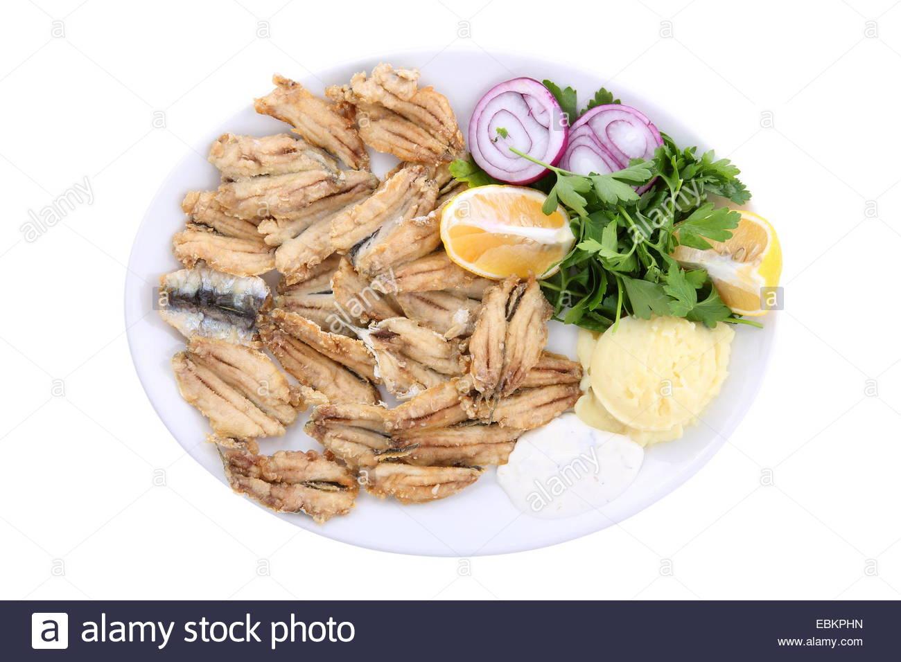 fish/food - Stock Image