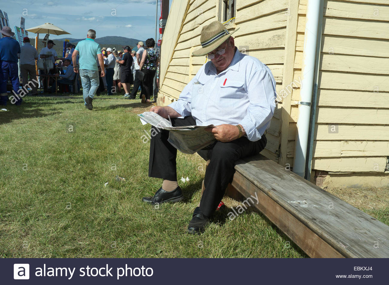 Mature man reads the racing paper at the Adaminaby Races (horse racing), in the Snowy Mountains, NSW, Australia. - Stock Image
