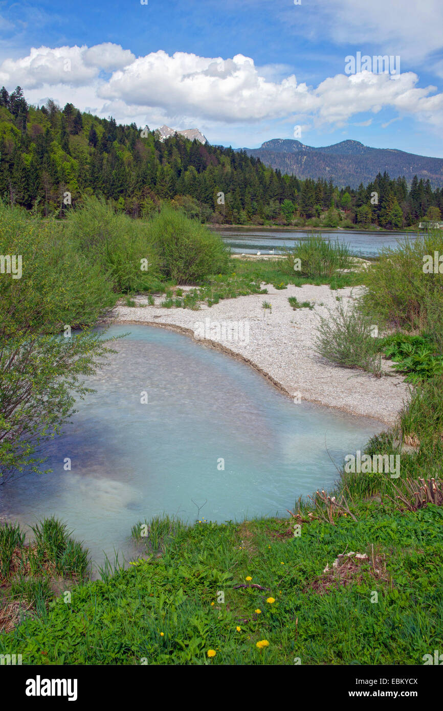 opaque glacier water running into mountain lake, Germany, Bavaria, Oberbayern, Upper Bavaria, Mittenwald - Stock Image