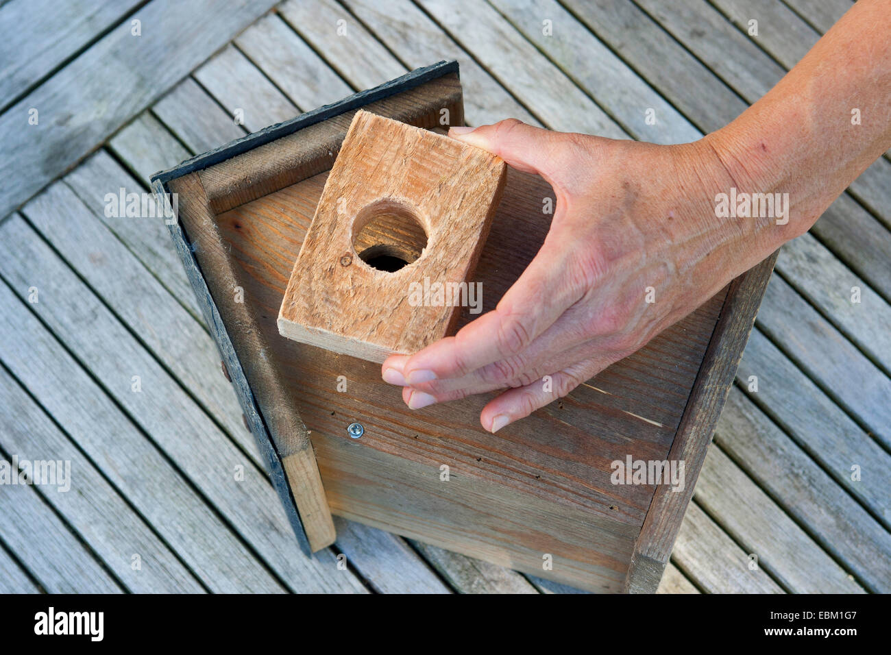 nest box with home-made marten protection, Germany Stock Photo