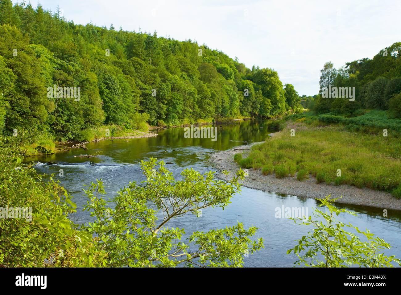 River Eden. Eden Lacy, Eden Valley, Cumbria, England, UK. - Stock Image