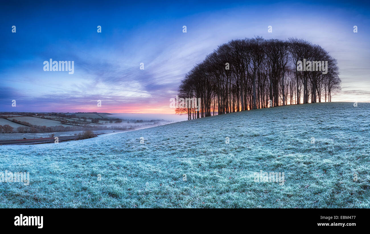 Frosty English Landscape - Stock Image