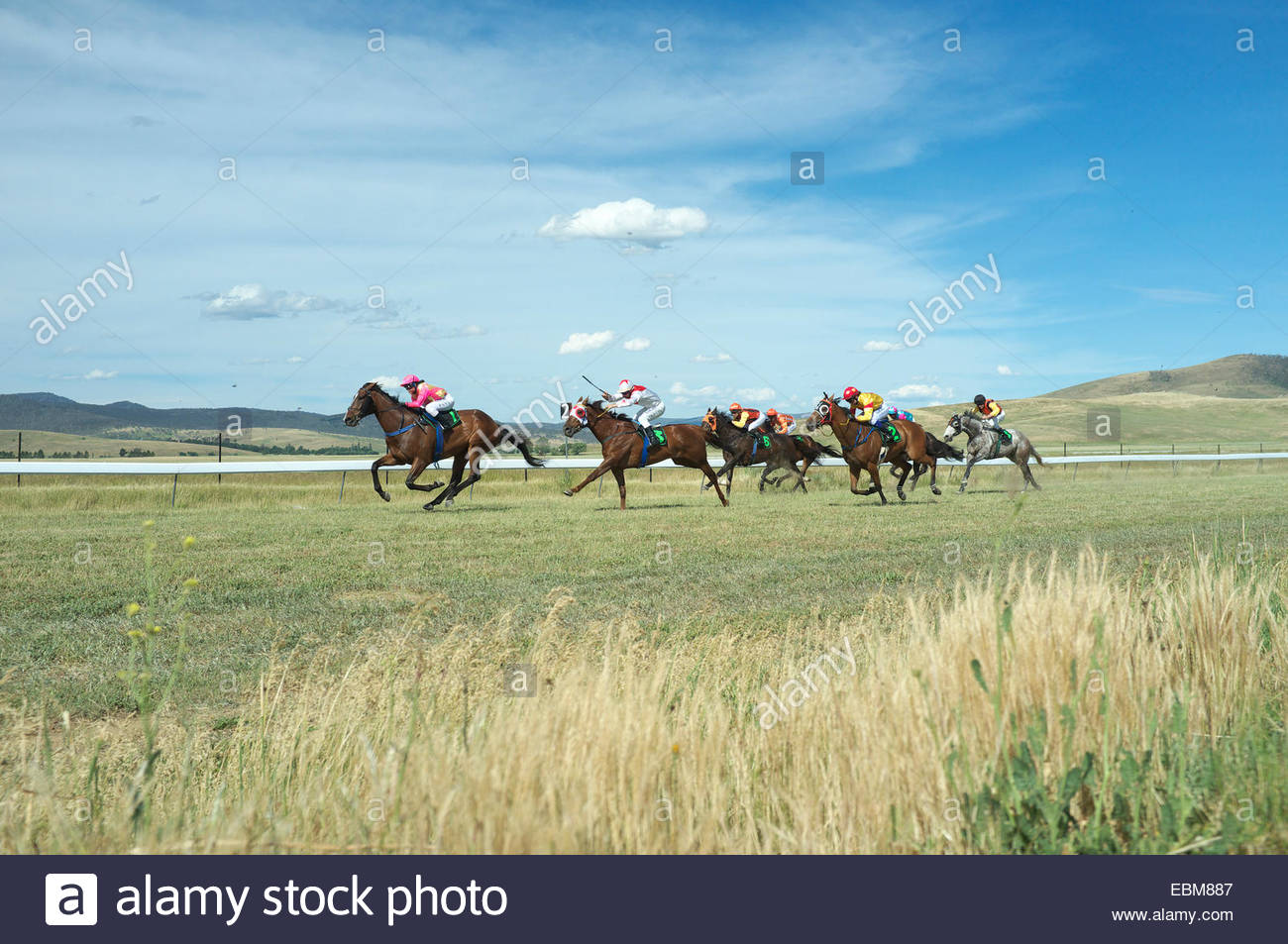 Horse racing at the Adaminaby Races, in Snowy Mountains, NSW, Australia. - Stock Image