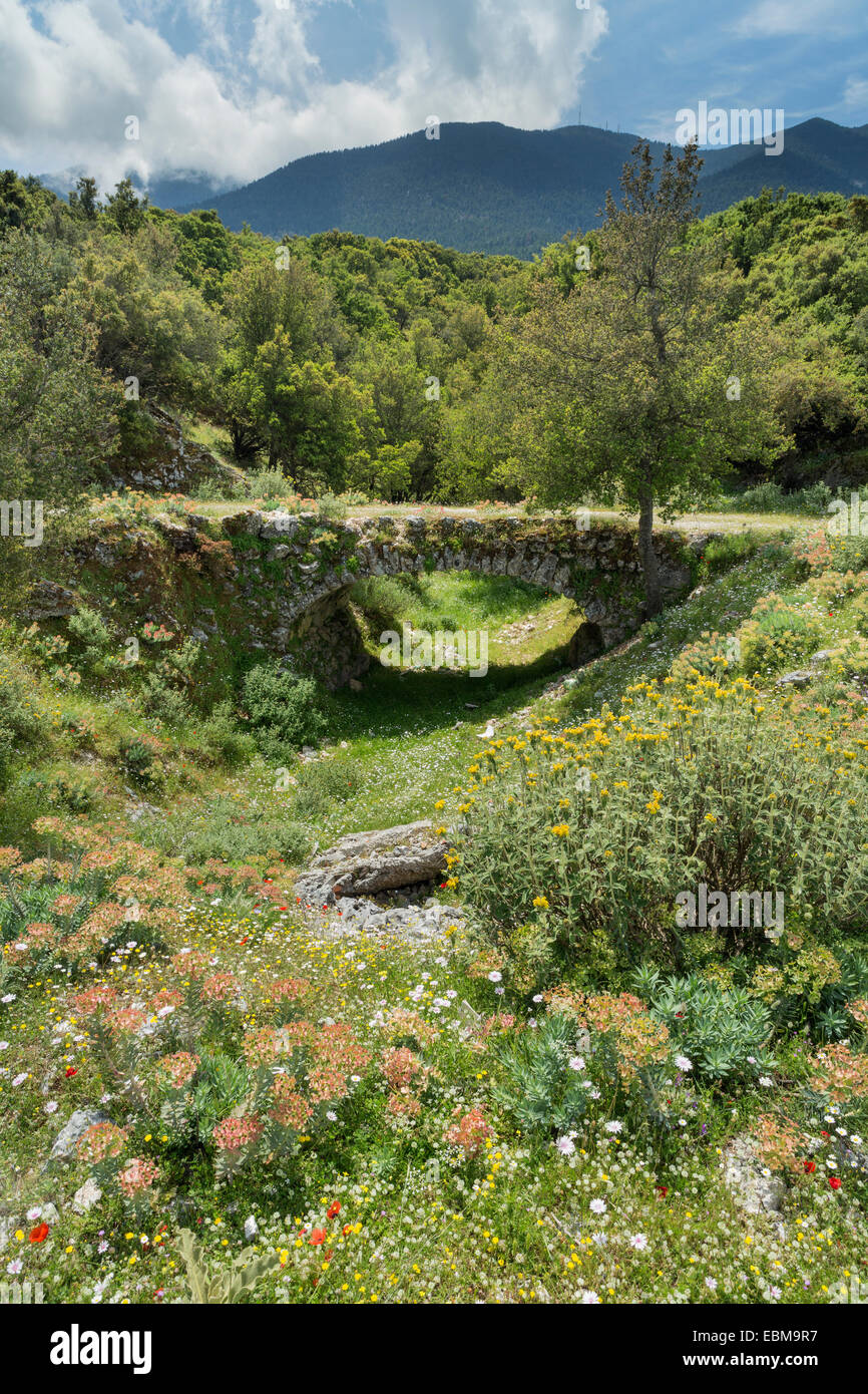 Old stone bridge and wild flowers by Digaleto, Kefalonia. Mount Aenos can be seen in the background Stock Photo