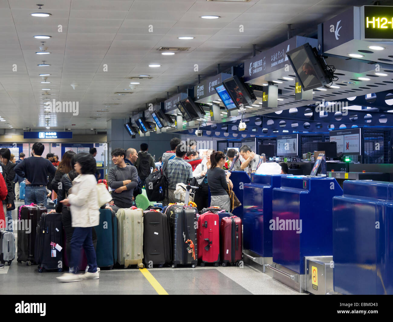 Passengers With Luggage Waiting In Line At The Check In