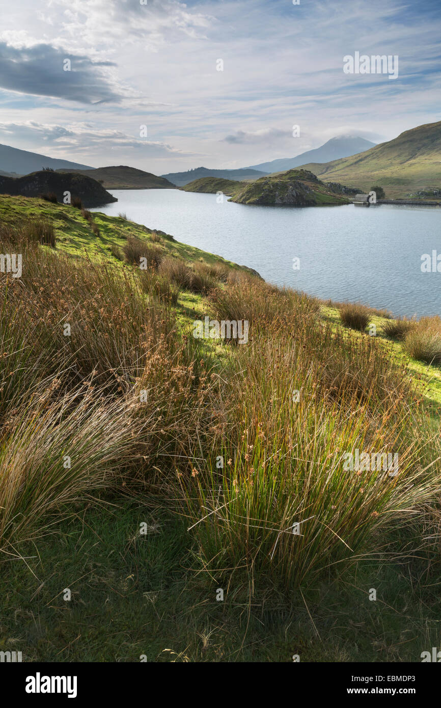 Strong sunrise shines across Llyn Dywarchen, Snowdonia, at sunrise. Stock Photo