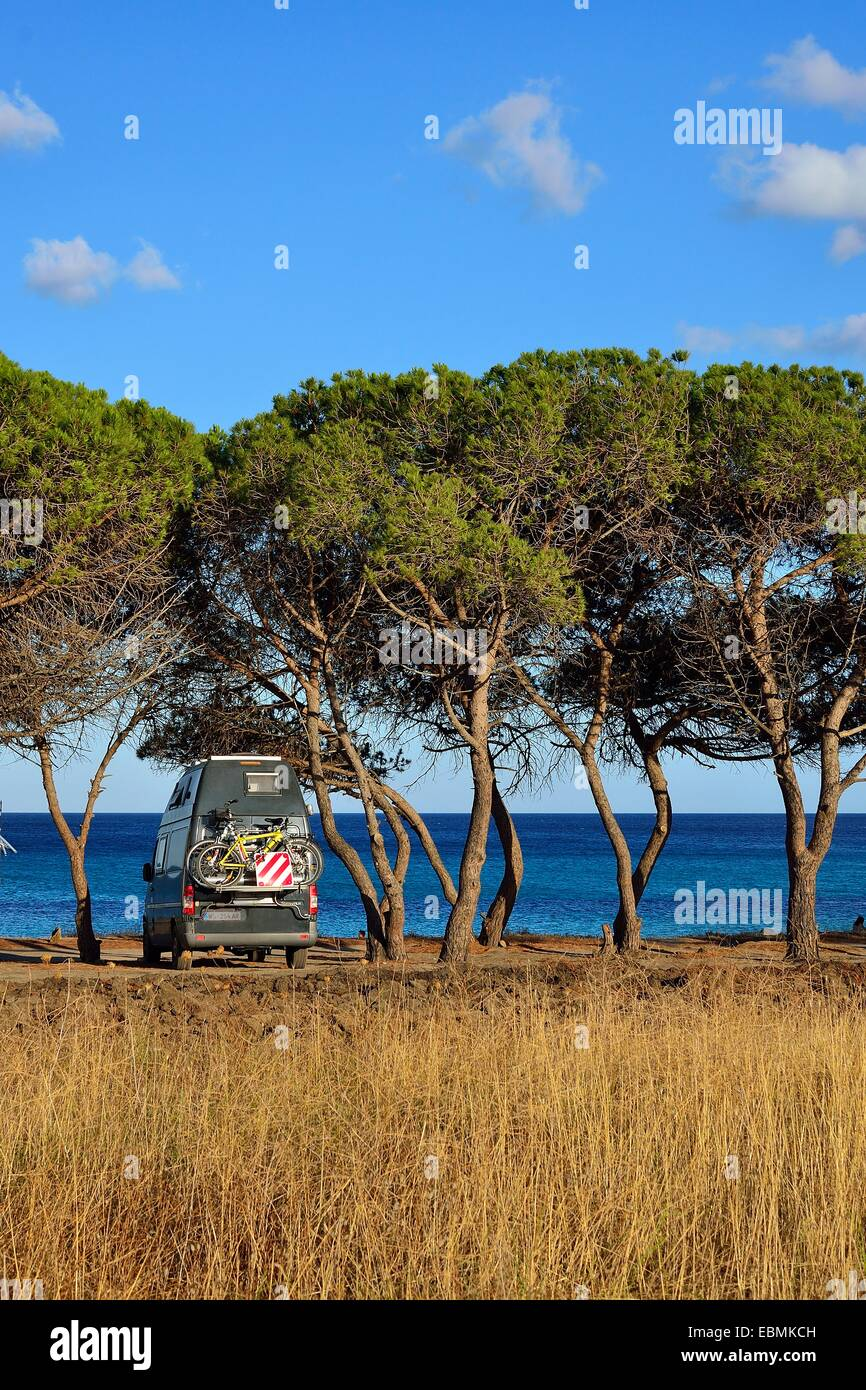 Camper between pine trees on the beach, Costa Rei, Cagliari, Sardinia, Italy Province - Stock Image