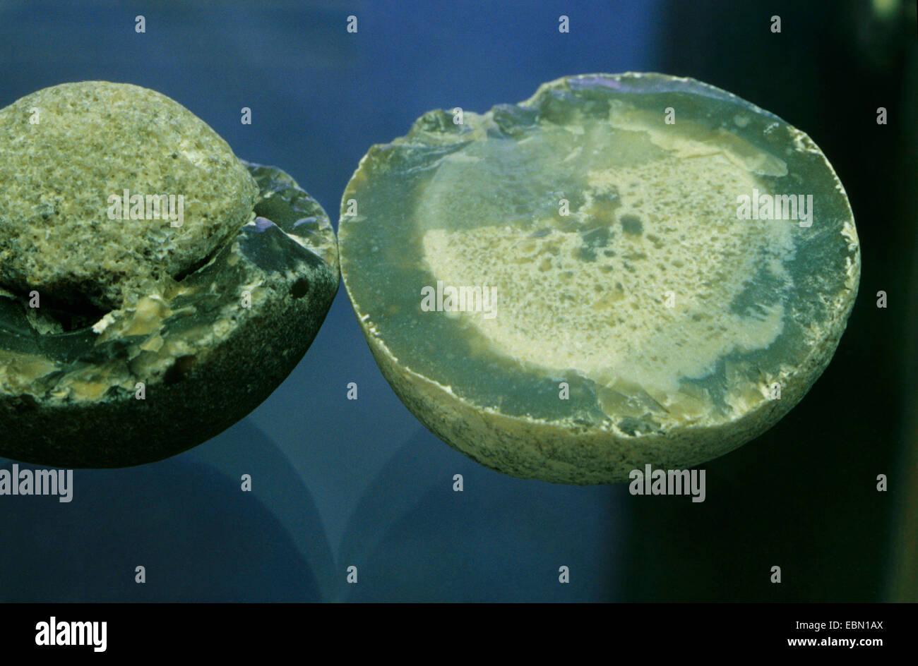 flint, Klapperstein, Plinthosella - Stock Image