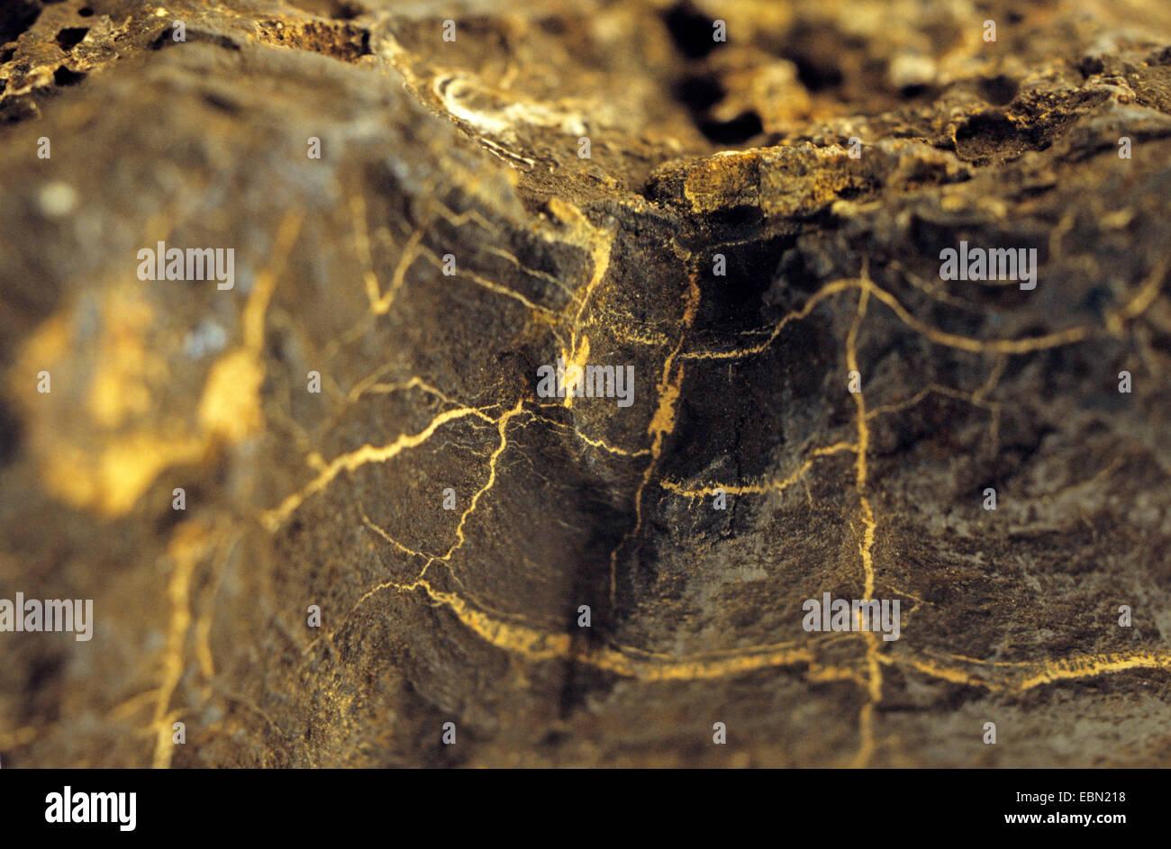 manganese crest - Stock Image