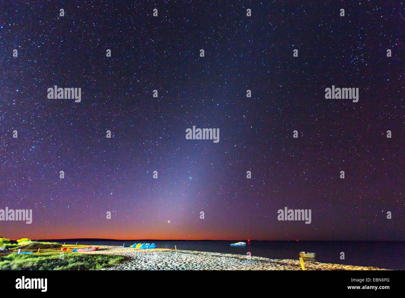 Night Monkey Stock Photos Amp Night Monkey Stock Images Alamy