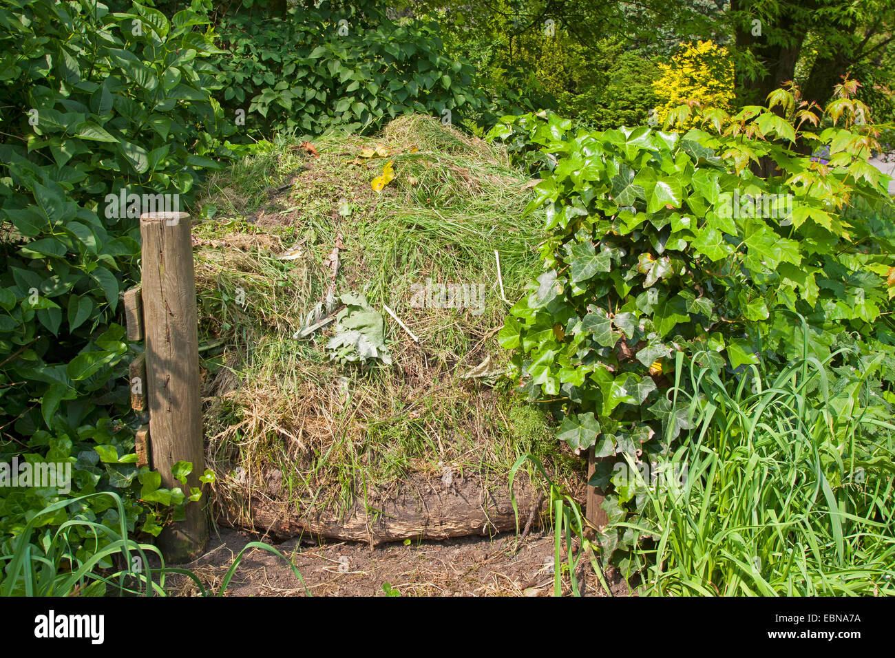 compost heap, Germany - Stock Image