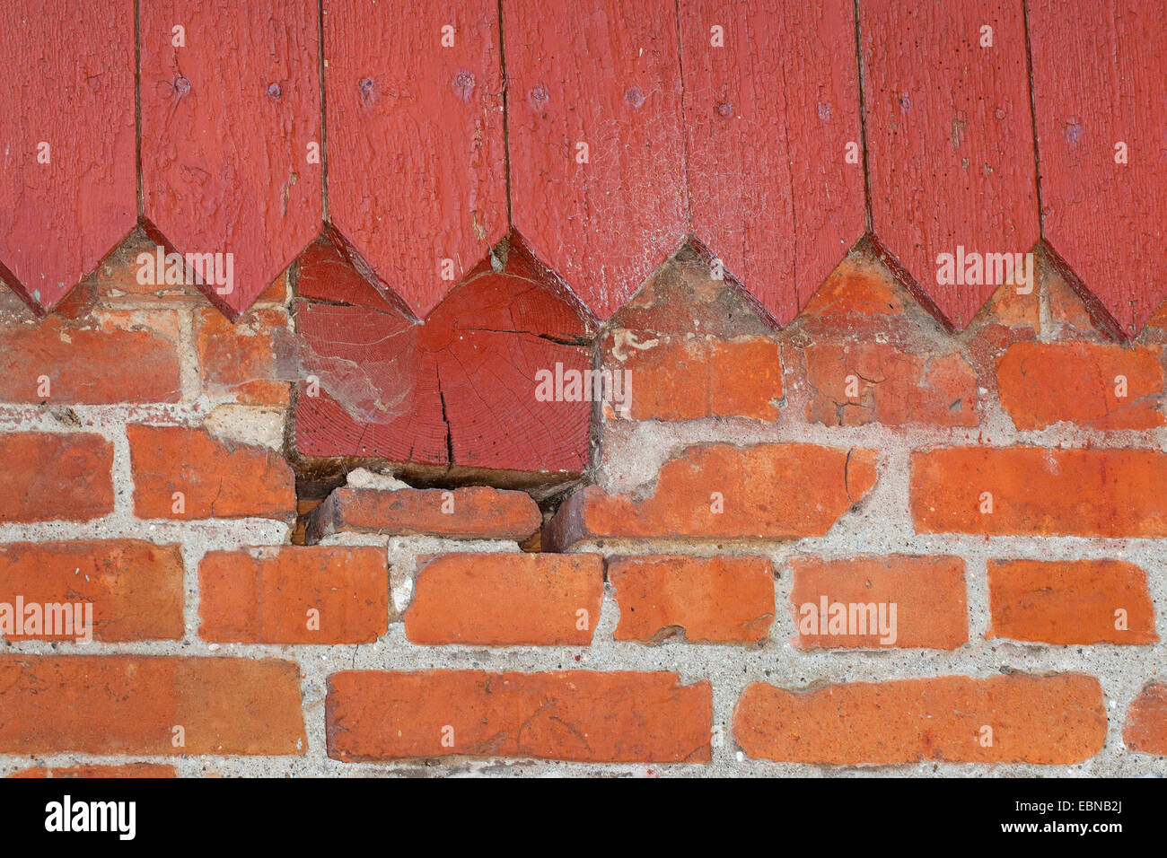 columns and niches in the masonry as a hiding place for animals, Germany - Stock Image