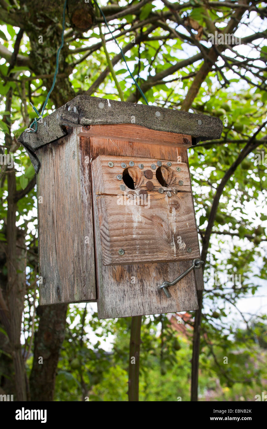 bird nest box with handmade marten protection, Germany - Stock Image