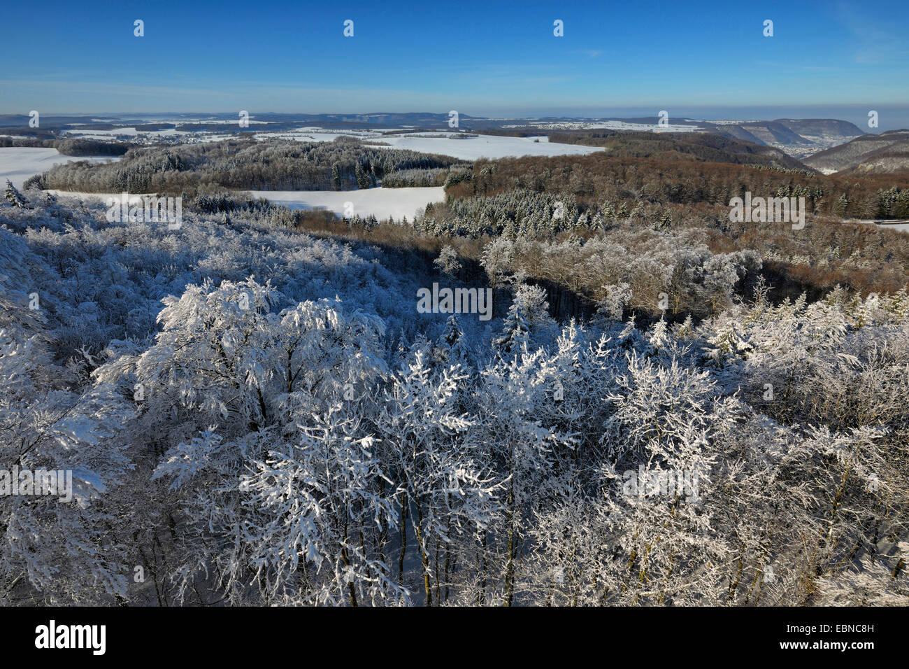 biosphere reserve Schwaebische Alb in winter, Germany, Baden-Wuerttemberg - Stock Image