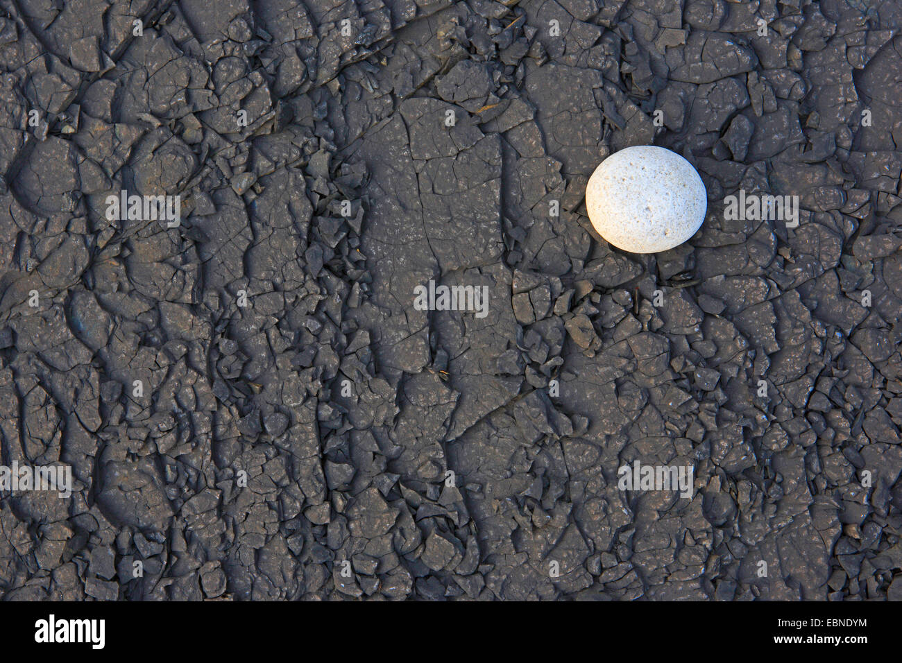 white stone on black beach, United Kingdom, Scotland - Stock Image