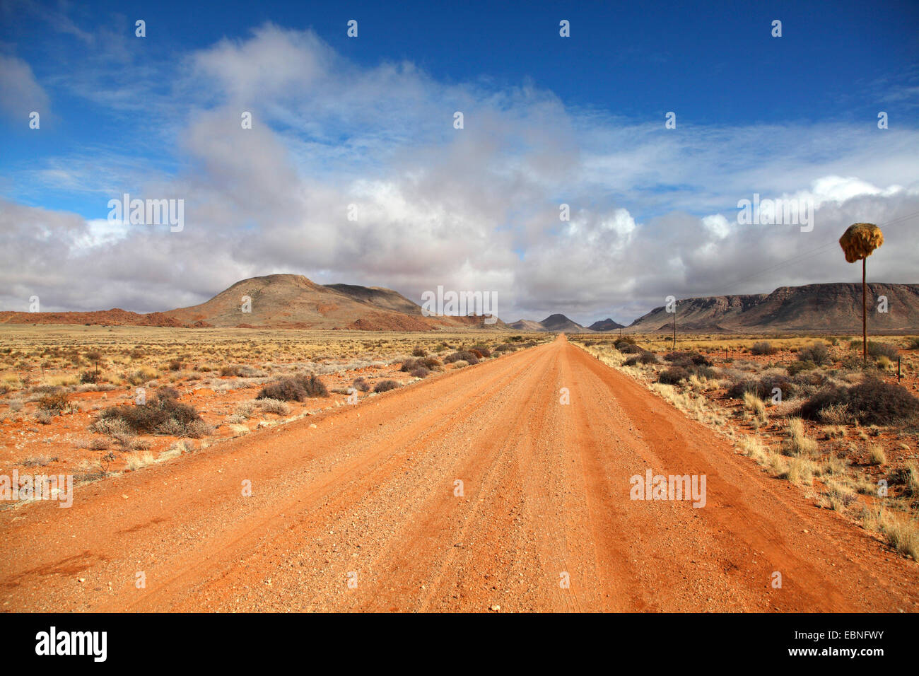 dirt road through the semi-desert southwest of Pofadder, South Africa, Northern Cape - Stock Image