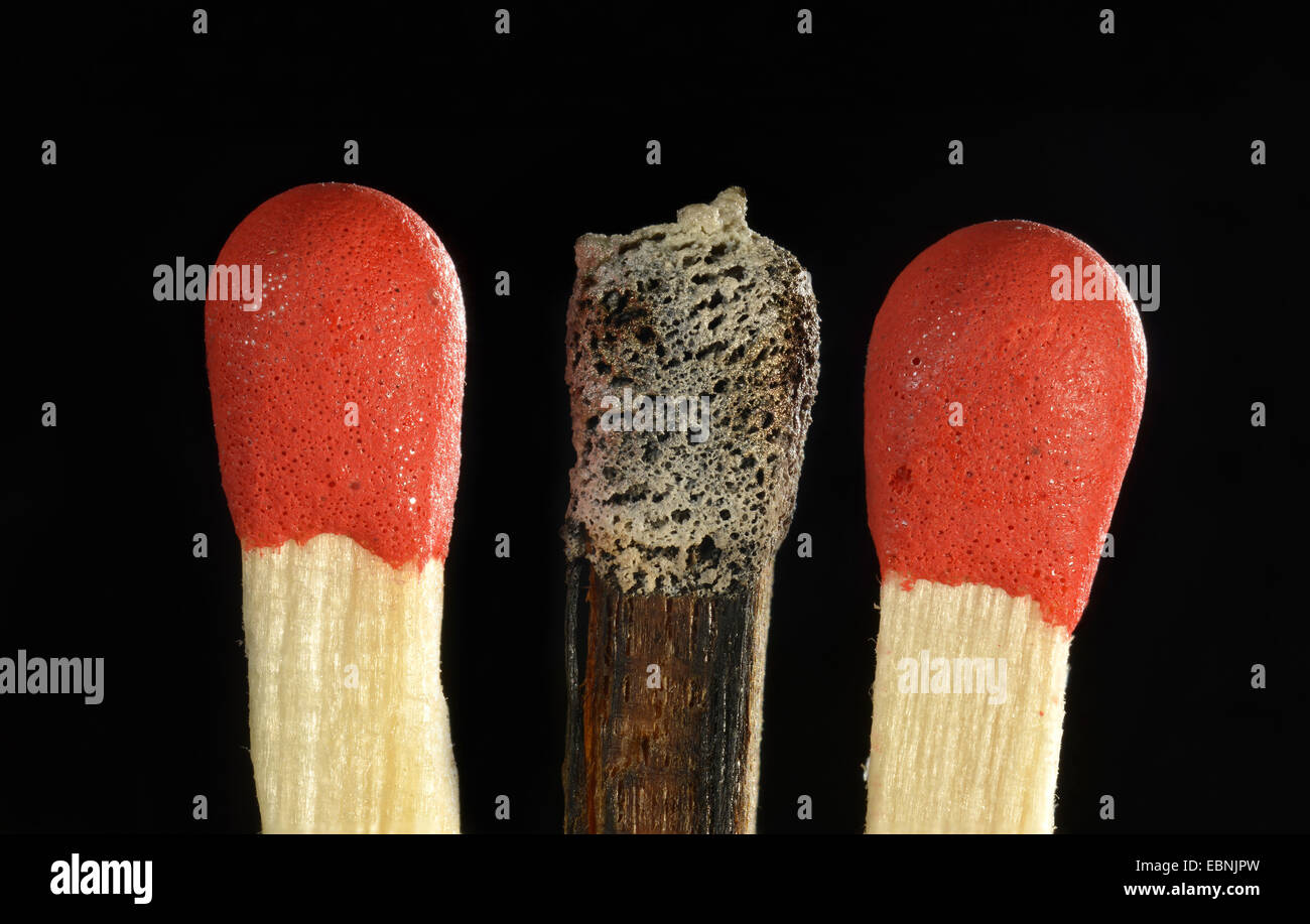 three matches, one burnt off match - Stock Image