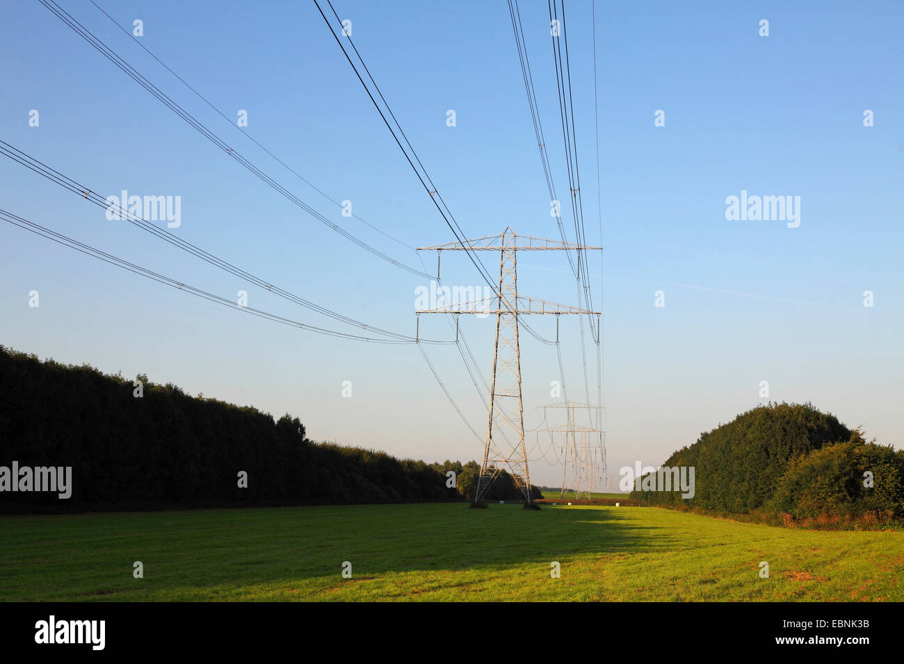 transmission power lines, Netherlands, Flevoland - Stock Image