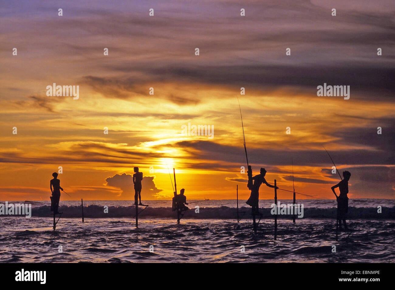 stilt fishermen at Sri Lanka, Sri Lanka - Stock Image