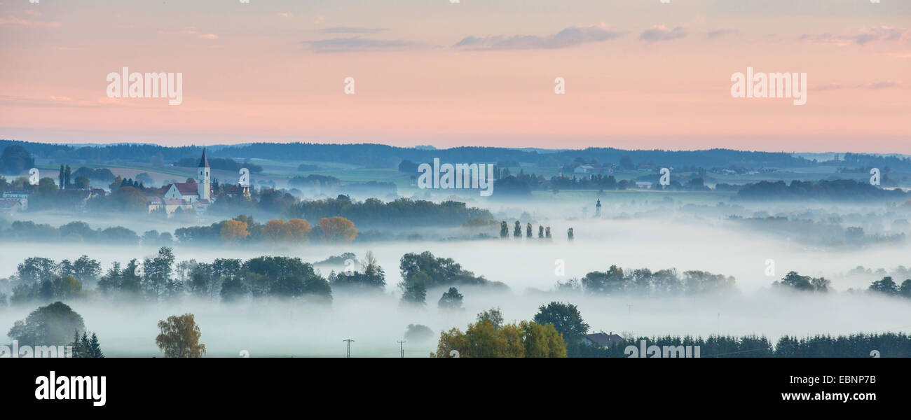 forest and meadows in early morning fog, atmospheric inversion, Germany, Bavaria, Isental, Dorfen - Stock Image