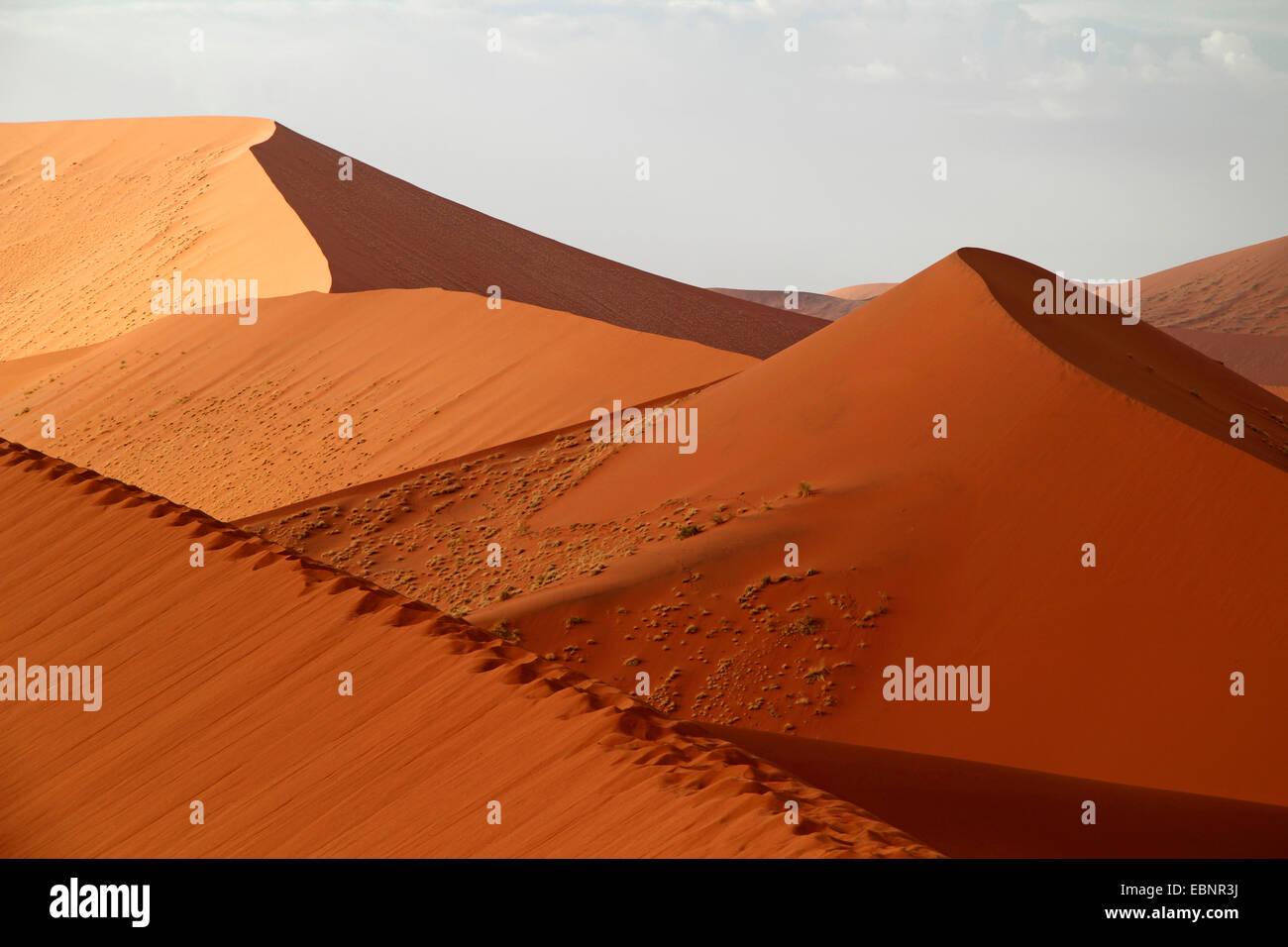 sand dunes of the namib dessert, Namibia, Namib Naukluft National Park, Sossusvlei - Stock Image