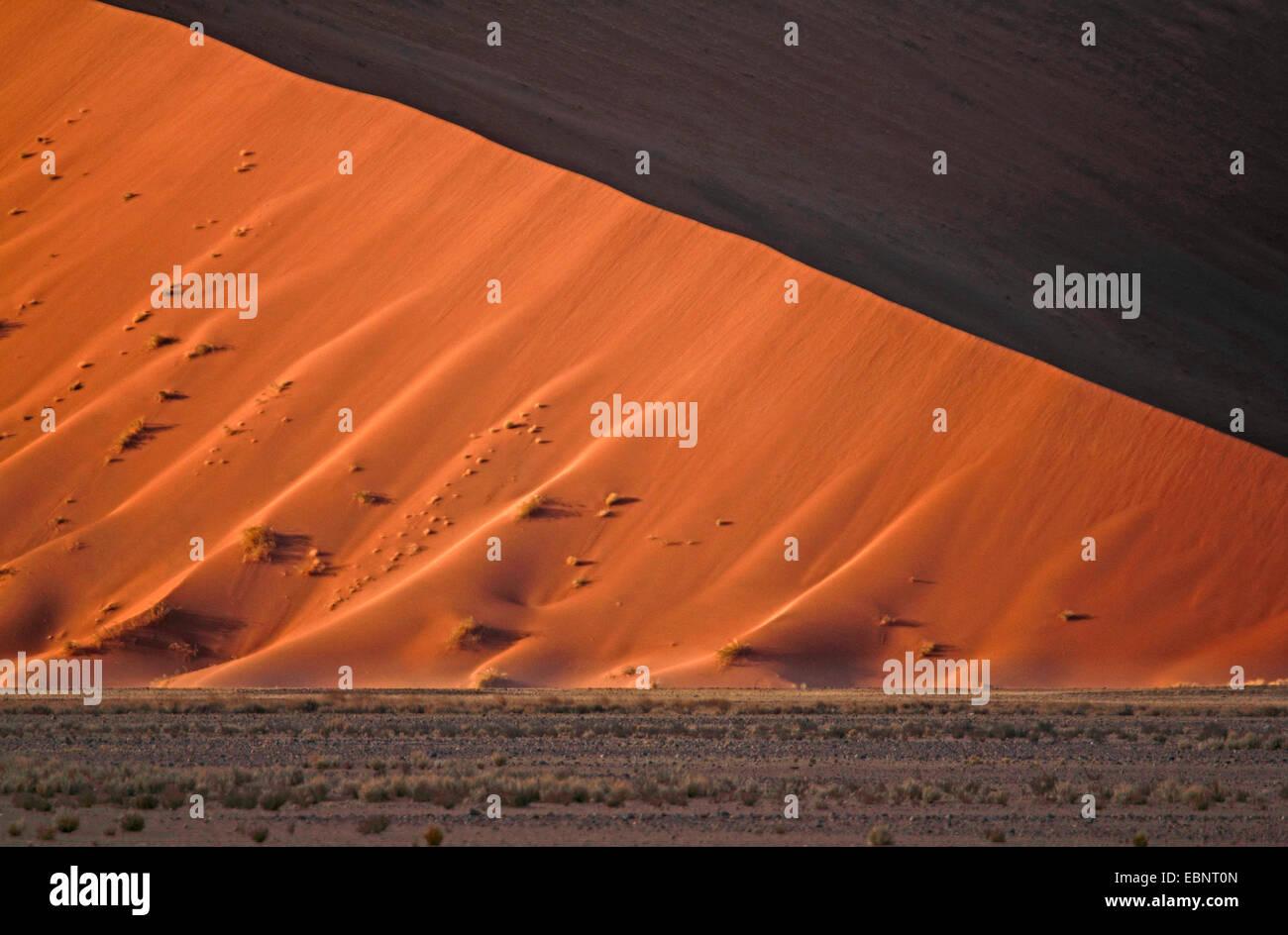 sand dune of the namib desert, Namibia, Namib Naukluft National Park, Sossusvlei - Stock Image