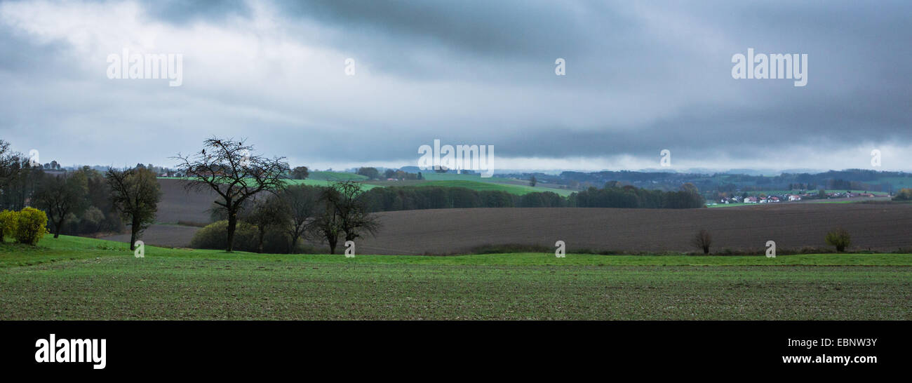 hilly field landscape with bad weather front with deep hanging clouds , Germany, Bavaria, Isental - Stock Image